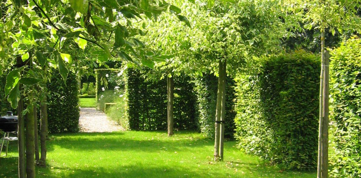 Ogrzewany ogród zimowy