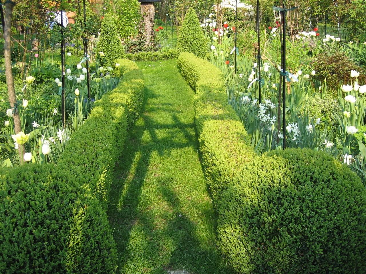 Zielony ogród przez cały rok