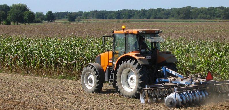 W rolnictwie można liczyć na dotacje