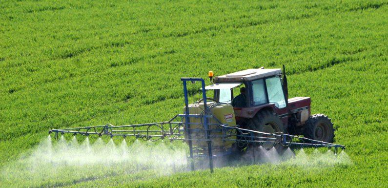 Wszyscy korzystamy z rolnictwa